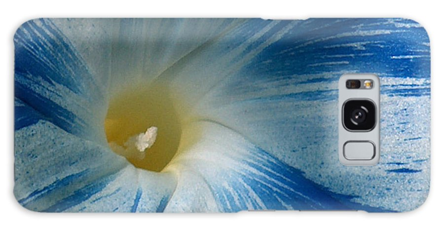 Morning Glory Galaxy S8 Case featuring the photograph Morning Glory by Racquel Morgan