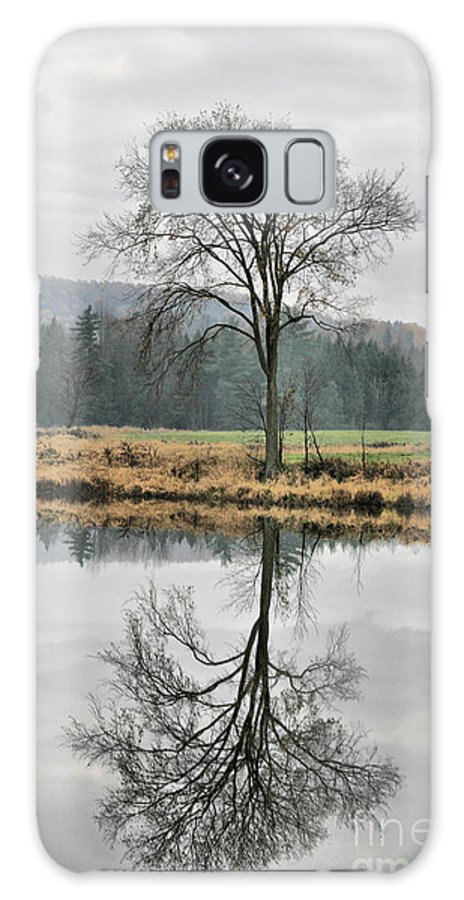 Reflections Galaxy S8 Case featuring the photograph Morning Haze And Reflections by Deborah Benoit