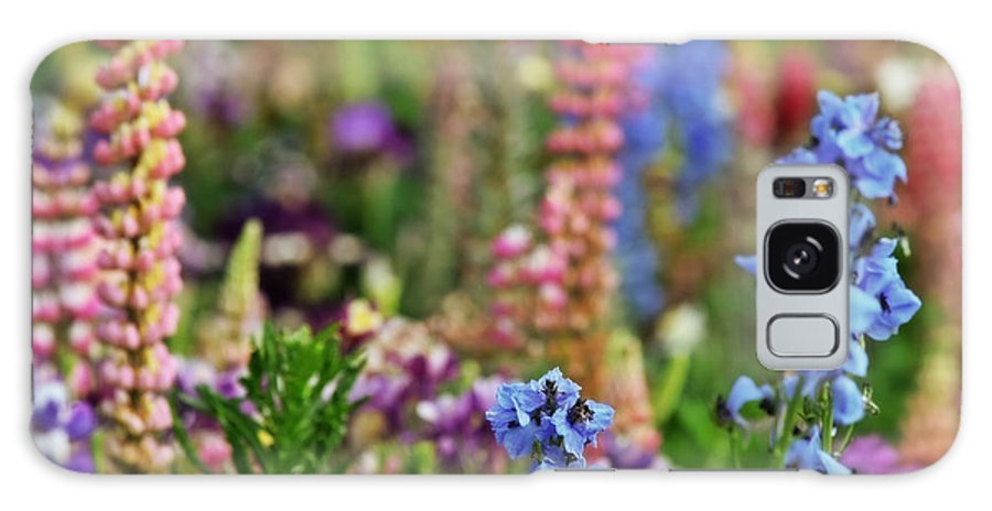Garden Galaxy S8 Case featuring the photograph Morning In The Garden by Bonnie Bruno