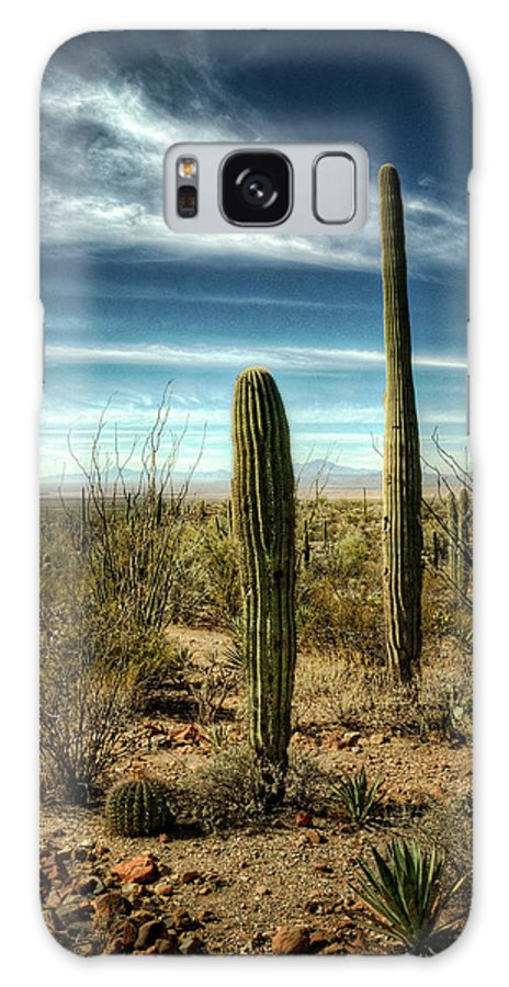 Arizona Galaxy S8 Case featuring the photograph Morning In The Sonoran Desert by Saija Lehtonen