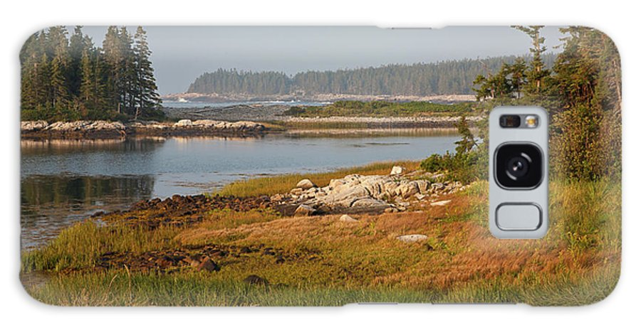 Acadia National Park Galaxy S8 Case featuring the photograph Morning Light At Schoodic by Susan Cole Kelly