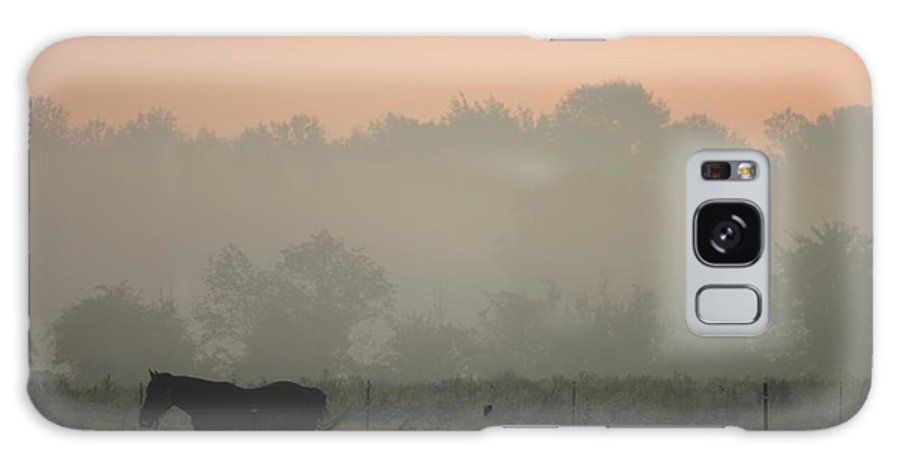 Betsy Lamere Galaxy S8 Case featuring the photograph Morning Mist by Betsy LaMere