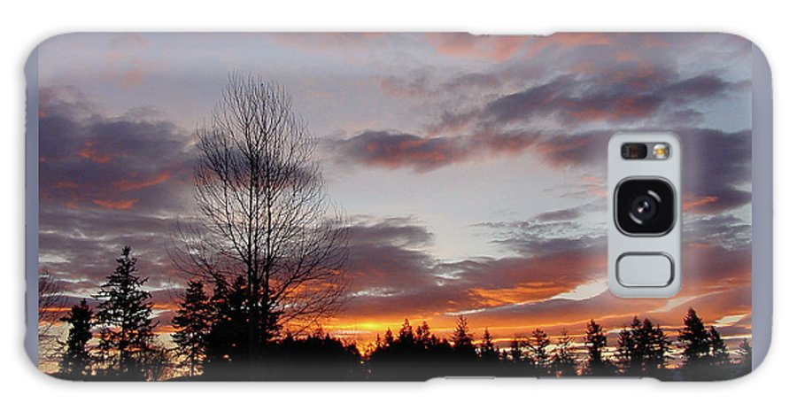 Sun Galaxy S8 Case featuring the photograph Morning Silhouetted - 1 by Shirley Heyn