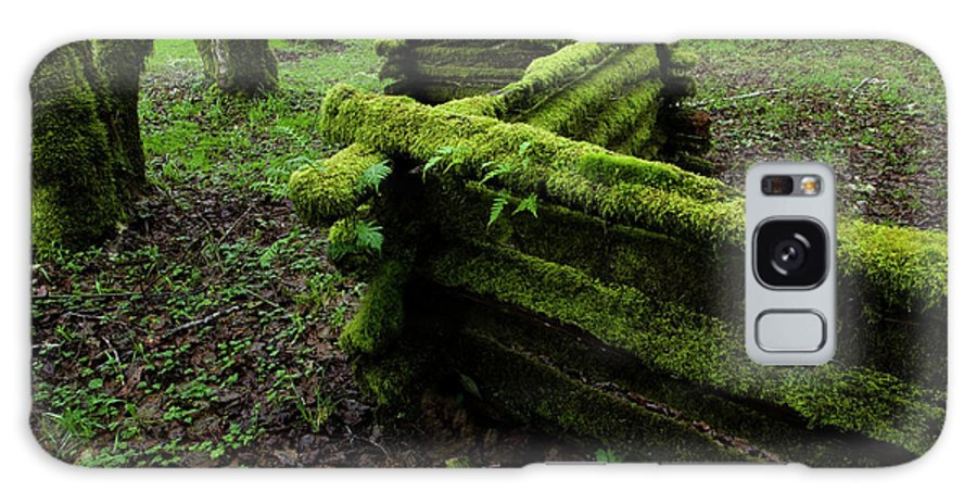 Moss Galaxy S8 Case featuring the photograph Mossy Fence 5 by Bob Christopher