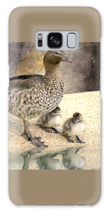 Animals Galaxy S8 Case featuring the photograph Mother Of Twins by Holly Kempe