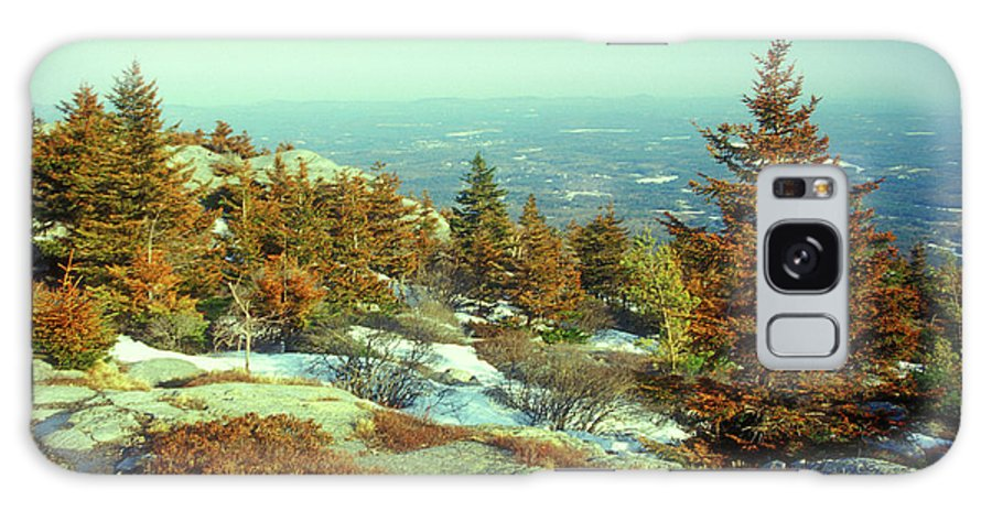 New Hampshire Galaxy S8 Case featuring the photograph Mount Monadnock Spruce Injury by John Burk