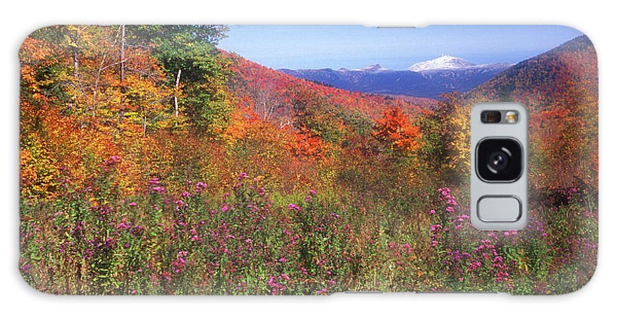 New Hampshire Galaxy S8 Case featuring the photograph Mount Washingon Flowers Foliage by John Burk