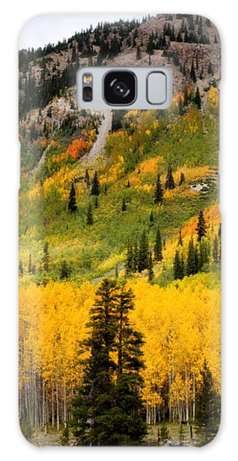 Aspen Galaxy S8 Case featuring the photograph Mountain Side Autumn by Lana Trussell