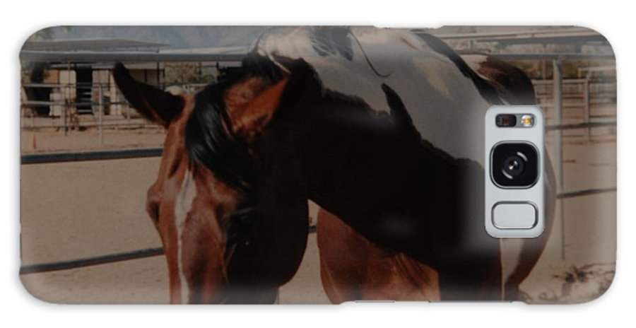 Horse Galaxy S8 Case featuring the photograph Mr Ed by Rob Hans