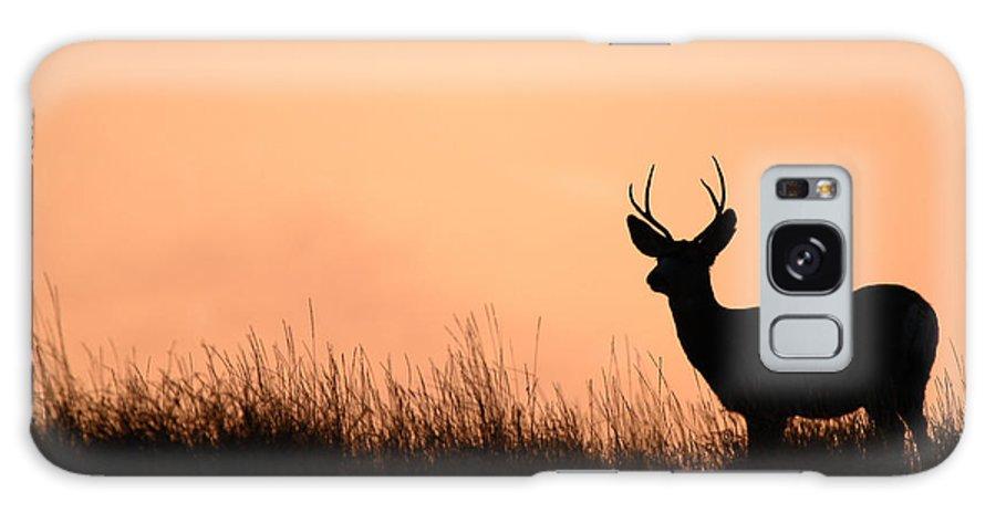 Deer Galaxy S8 Case featuring the photograph Mule Deer Buck Against South Dakota Sunset by Max Allen