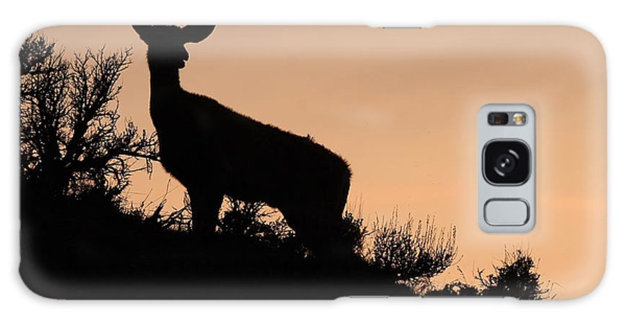 Deer Galaxy S8 Case featuring the photograph Mule Deer Silhouetted Against Sunset Ridge by Max Allen