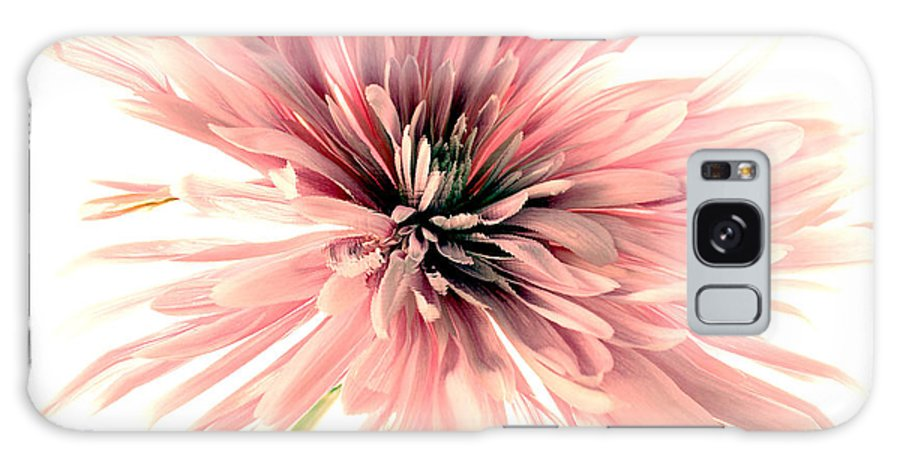 Flower Galaxy S8 Case featuring the photograph Muse by Helyn Broadhurst Cornille
