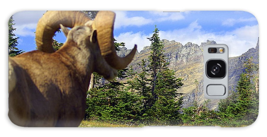 Glacier National Park Galaxy S8 Case featuring the photograph My Kingdom by Marty Koch