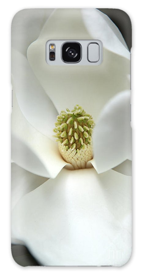 Magnolia Galaxy Case featuring the photograph Mysteriously by Amanda Barcon