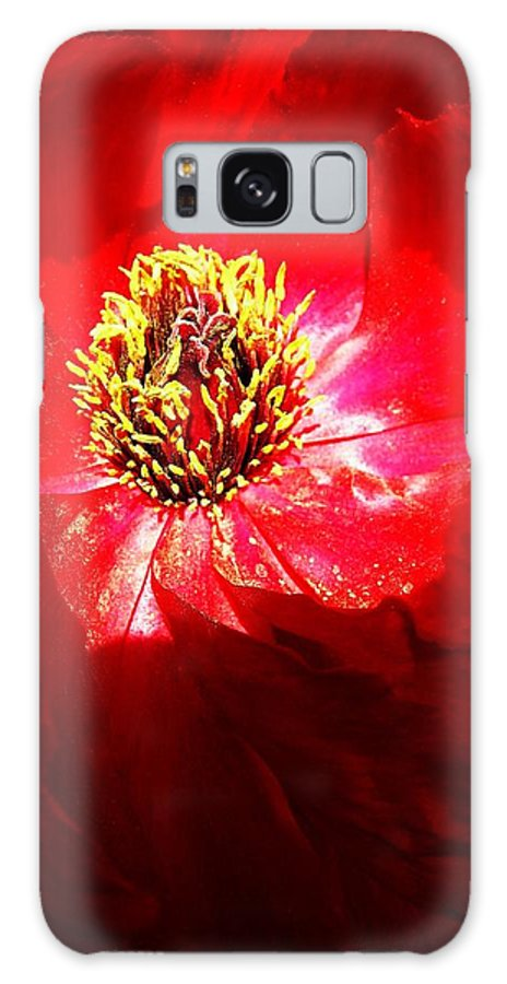 Garden Galaxy S8 Case featuring the photograph Mystical ... by Juergen Weiss