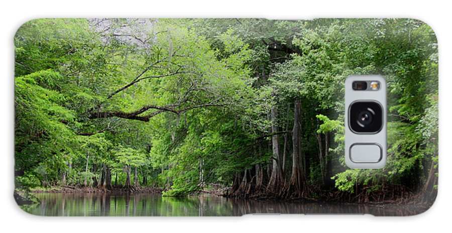 Withlacoochee River Galaxy S8 Case featuring the photograph Mystical Withlacoochee River by Barbara Bowen