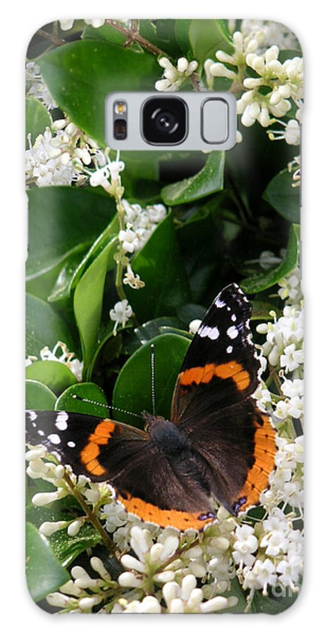 Nature Galaxy S8 Case featuring the photograph Nature In The Wild - A Sweet Stop by Lucyna A M Green