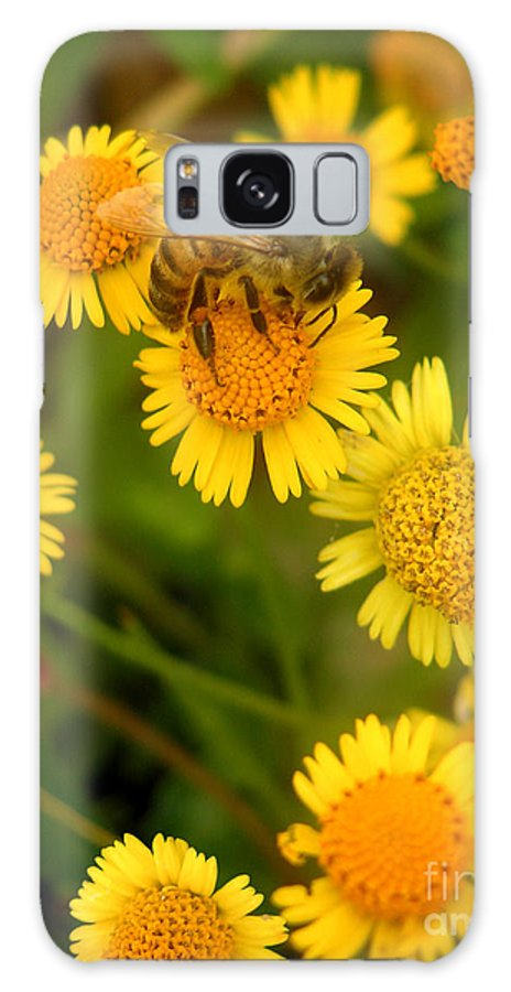 Nature Galaxy Case featuring the photograph Nature In The Wild - The Nectar Company by Lucyna A M Green