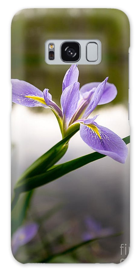 Flower Galaxy S8 Case featuring the photograph Nature Standing by Matthew Trudeau