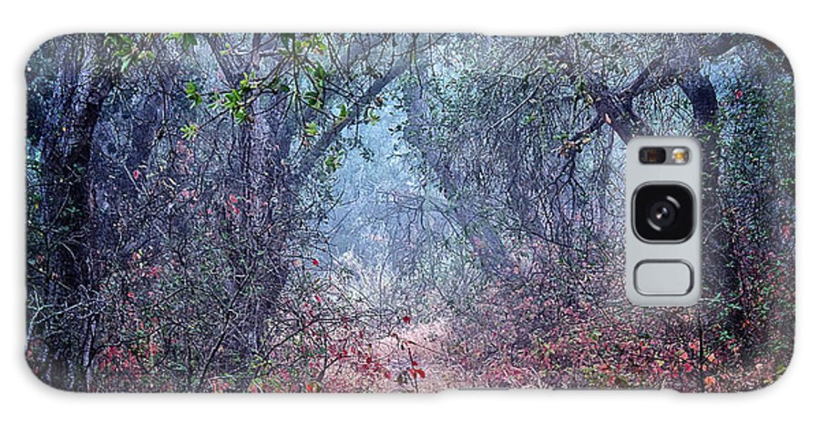 Nature Galaxy Case featuring the photograph Nature's Chaos, Arroyo Grande, California by Zayne Diamond Photographic
