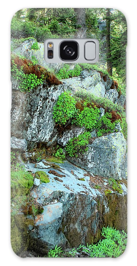 Nature Galaxy S8 Case featuring the photograph Nature's Collage by Donna Blackhall