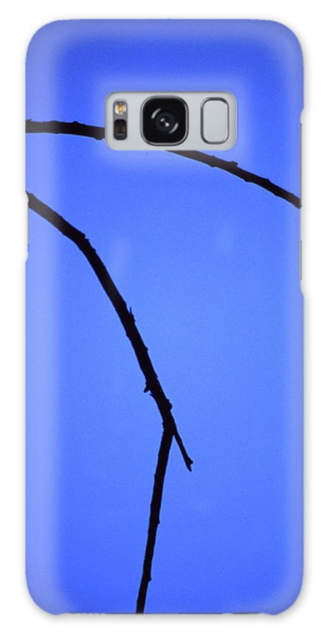 Nature Galaxy S8 Case featuring the photograph Natures Elegance by Randy Oberg