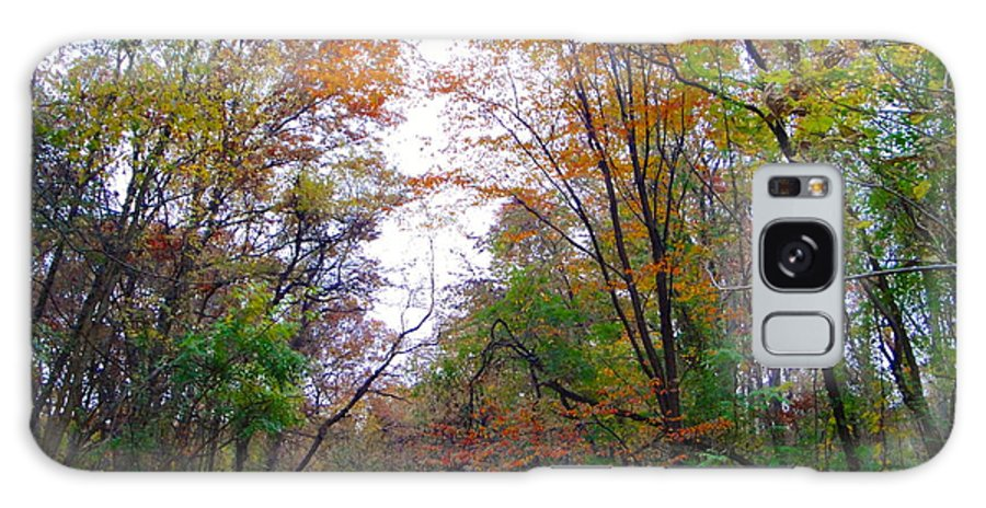 Autumn Landscape Galaxy Case featuring the photograph Nature's Expression-4 by Leonard Holland