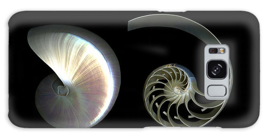 Nautilus Galaxy Case featuring the photograph Nautilus Deconstructed by Christian Slanec