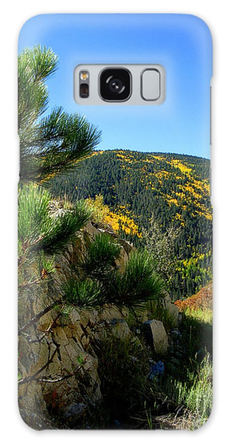 Nieves Nitta Galaxy S8 Case featuring the photograph New Mexico Wilderness by Nieves Nitta
