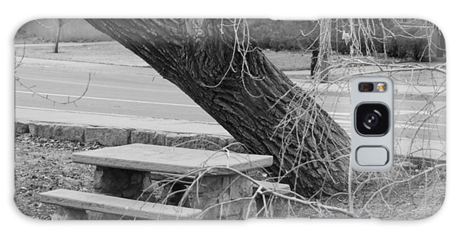 Trees Galaxy S8 Case featuring the photograph No One Sits Here In Black And White by Rob Hans