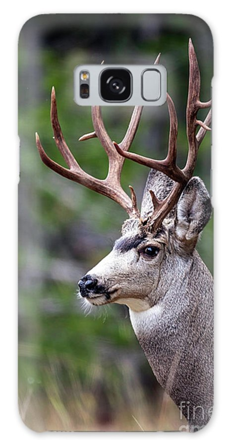 Non-typical Galaxy S8 Case featuring the photograph Non-typical Mule Deer Buck Portrait. by Daryl L Hunter