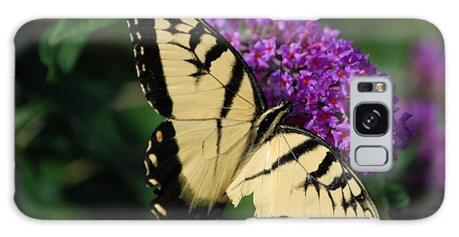 Butterfly Galaxy S8 Case featuring the photograph Nothing Is Perfect by Debbi Granruth