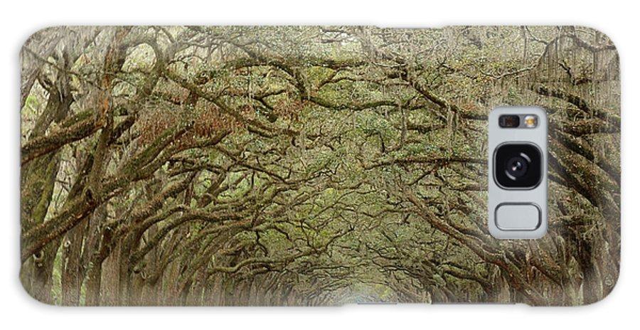Wormsloe Galaxy S8 Case featuring the photograph Oak Avenue by Jeffrey Schreier