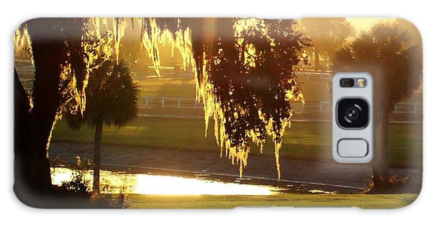Sunset Galaxy S8 Case featuring the photograph Ocala Sunset by Kristen Wesch