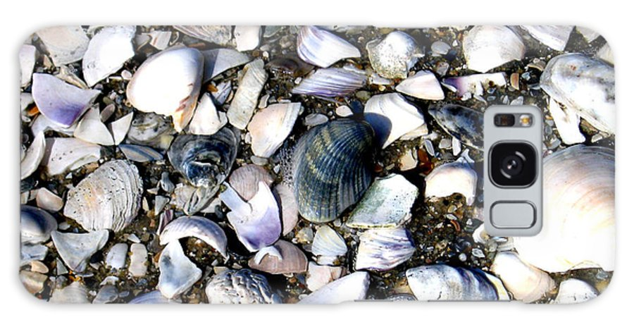 Ocracoke Galaxy S8 Case featuring the photograph Ocracoke Shells by Wayne Potrafka
