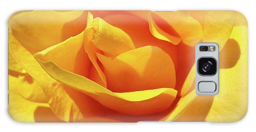Rose Galaxy S8 Case featuring the photograph Office Art Prints Roses Orange Yellow Rose Flower 1 Giclee Prints Baslee Troutman by Baslee Troutman