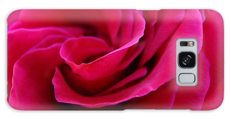 Rose Galaxy S8 Case featuring the photograph Office Art Rose Spiral Art Pink Roses Flowers Giclee Prints Baslee Troutman by Baslee Troutman