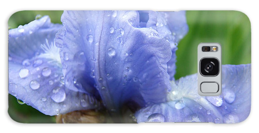 Iris Galaxy S8 Case featuring the photograph Office Art Wet Blue Iris Flower Floral Giclee Baslee Troutman by Baslee Troutman