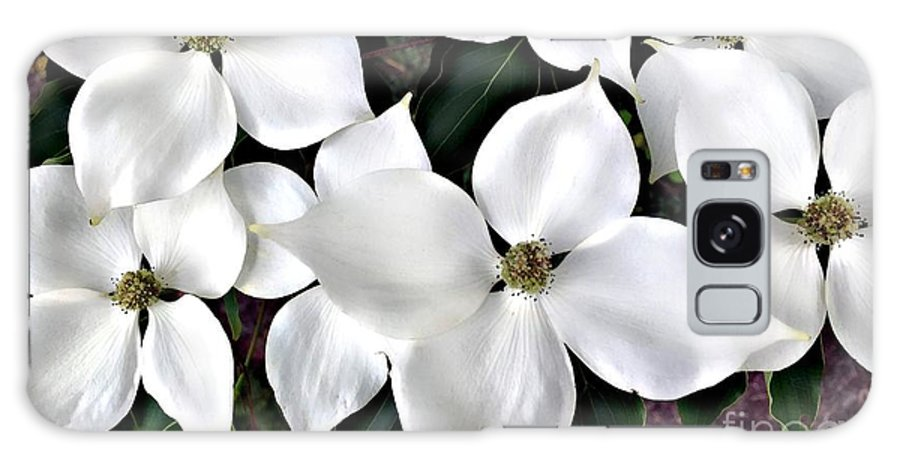 Floral Galaxy S8 Case featuring the photograph Oh Dogwood by Roxanne Marshal
