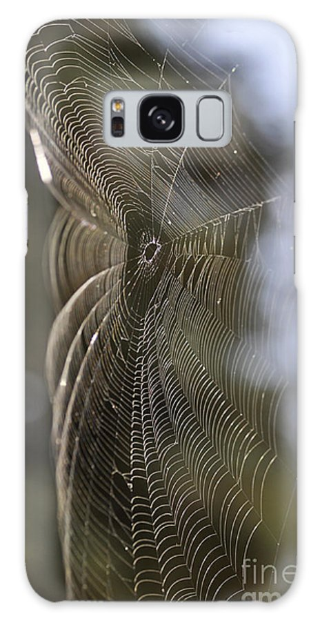 Clay Galaxy S8 Case featuring the photograph Oh What Webs We Weave by Clayton Bruster