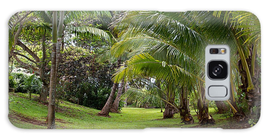 Old Galaxy S8 Case featuring the photograph Old Hawaiian Garden by Roger Mullenhour