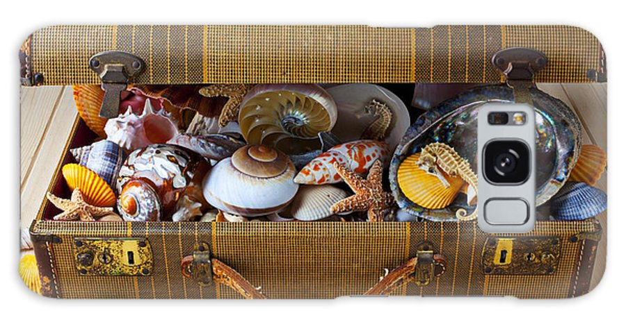 Suitcase Full Sea Shells Travel Galaxy S8 Case featuring the photograph Old Suitcase Full Of Sea Shells by Garry Gay