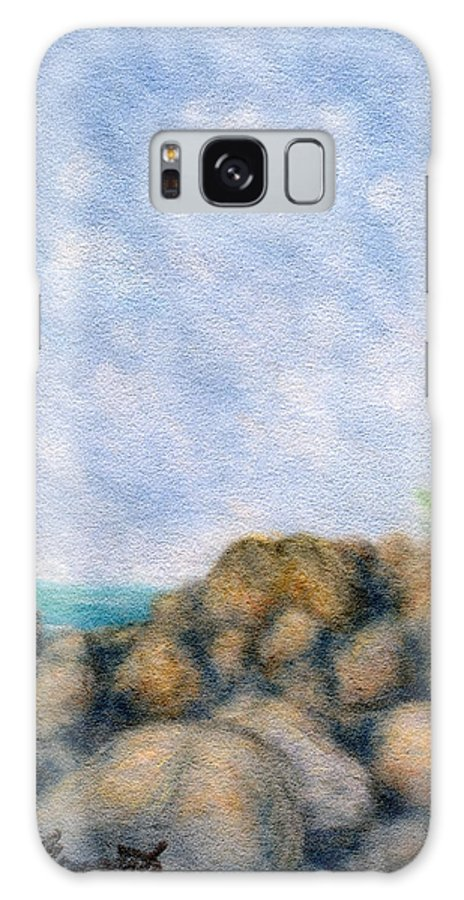 Rainbow Colors Pastel Galaxy S8 Case featuring the painting On The Rocks by Kenneth Grzesik