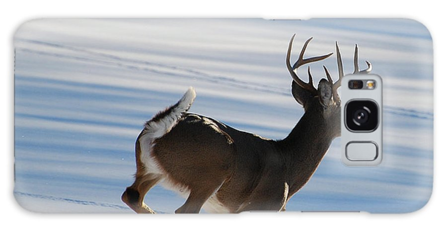 Deer Galaxy S8 Case featuring the photograph On The Run by Todd Hostetter