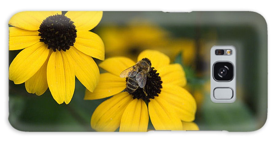 Yellow Galaxy Case featuring the photograph One Bee Over The Flower's Nest by Adrian Bud