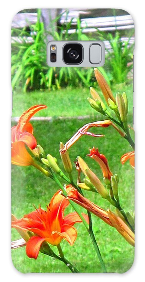 Lilly Galaxy S8 Case featuring the photograph Orange And Green by Ian MacDonald