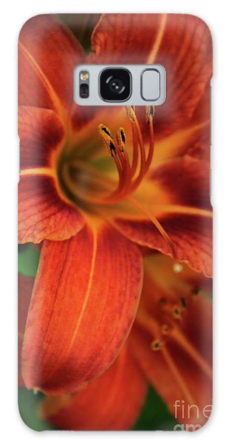 Flower Galaxy S8 Case featuring the photograph Orange Daylily Beauty by Marjorie Imbeau