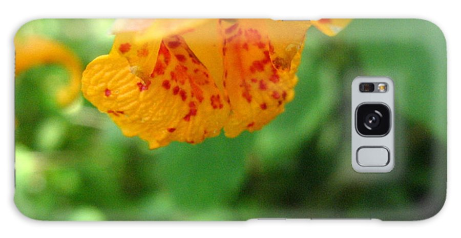Flower Galaxy S8 Case featuring the photograph Orange Flower by Melissa Parks