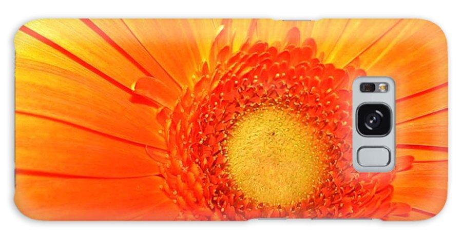 Flower Galaxy S8 Case featuring the photograph Orange Flower by Ruben Flanagan