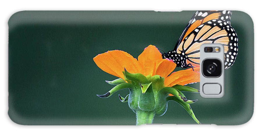 Monarch Galaxy Case featuring the photograph Orange Juice by Art Cole